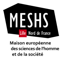 MESHS Lille - Appel à communications